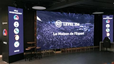 Arena Level 256